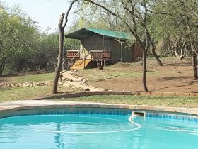 inkwazi-bush-lodge-pool