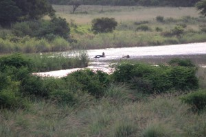 umkomaas-river-tube-rafting-001